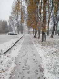 pervyi-sneg-v-homutovke-517-690
